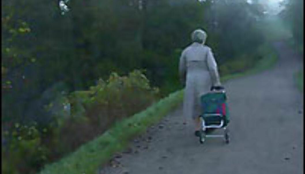 Flere pensjonister og færre til å betale for dem.<br /> <I>Foto: Inga Holst</I> Foto: Inga Holst
