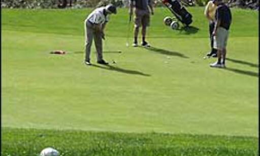 Slipp golfkøllene løs - det trenger ikke koste femsifrede beløp selv om du må ut med det i de dyreste klubbene.