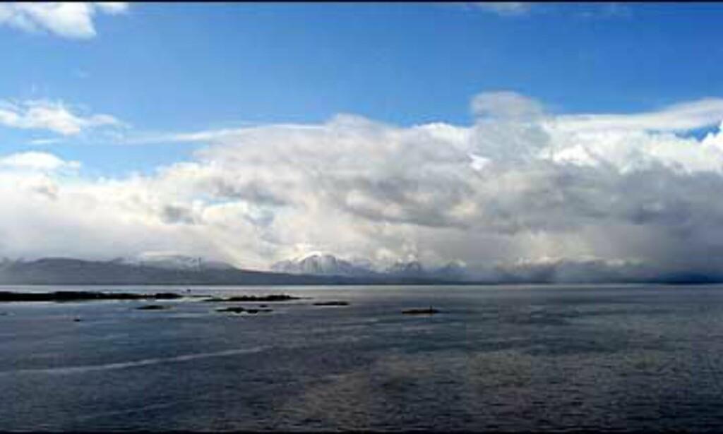 Utsikt til fjorden og Moldepanoramaet fra de fleste av rommene.