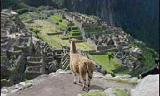 Machu Picchu i Peru. Foto: Paul Jacob Hansen