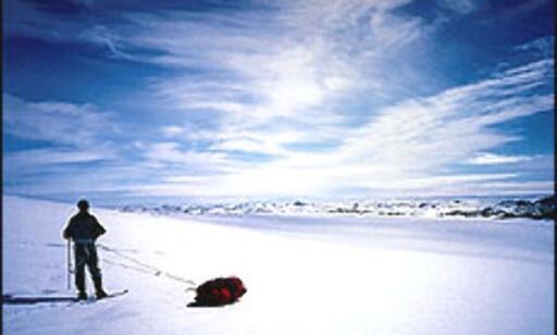 Tur over Grønland. Foto: Harald Kenneth Loe Foto: Harald Kenneth Loe