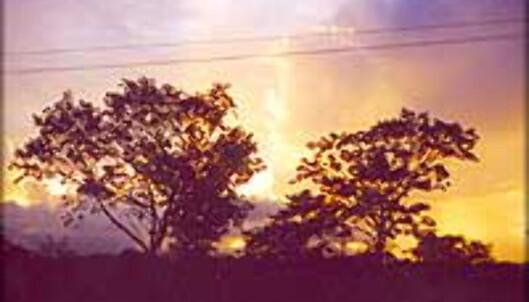 Solnedgangen over Yucatán-halvøya. Foto: INGVILD KJØDE
