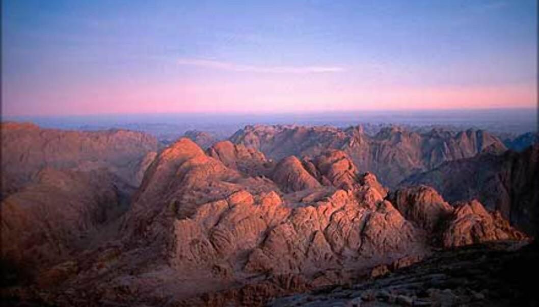 Sinaifjellets topp byr på eksepsjonell utsikt over det karrige landskapet.<br /> <I>Foto: Haakon Stenersen</I> Foto: Haakon Stenersen