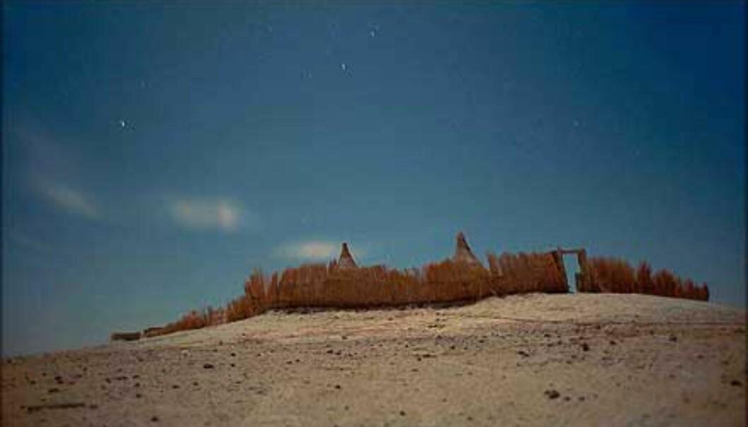Nattlig leirplass i ørkenen, Bahariya.<br /> <I>Foto: Haakon Stenersen</I> Foto: Haakon Stenersen