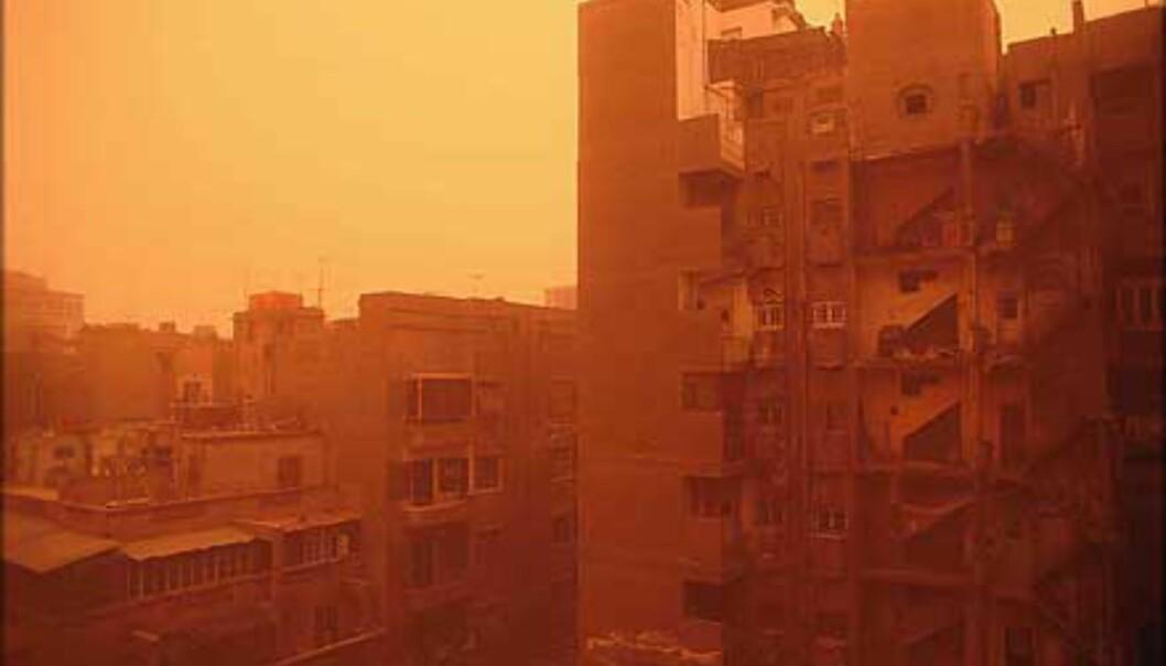 Slik ser det ut når Kairo rammes av sandstorm.<br /> <I>Foto: Haakon Stenersen</I> Foto: Haakon Stenersen