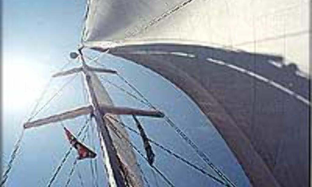 Mange drømmer om å få vind i seilene.<br /> <i>Foto: Saltyseas.com</I>