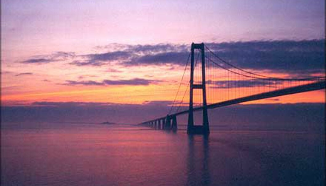 Den er fotogen - Øresundsbroen. <br /> Foto: Tony Renstrøm Foto: Tony Renstrøm