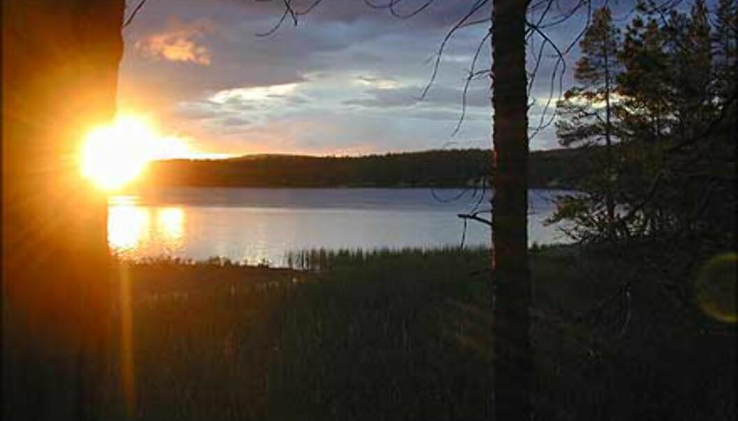 Et rotnorsk fiskevann like før solen går ned.<br /> Foto: Olaf Gaarder Foto: Olaf Gaarder