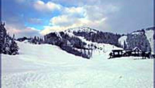 Masse snø på Gaustablikk.