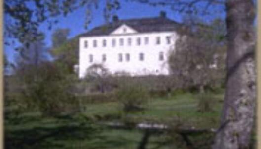 Mem slott - bare noen timer unna Oslo. Det billgste slottet vi fant!