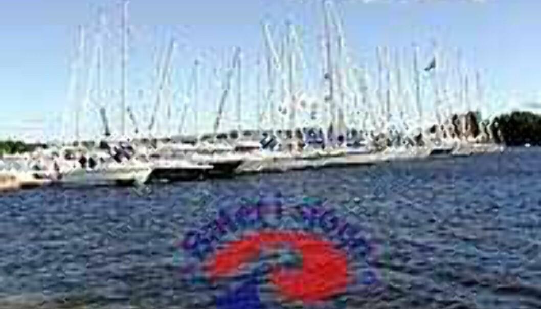 Båter i sjøen 2000 – Salgsmesse uten nyhetens interesse