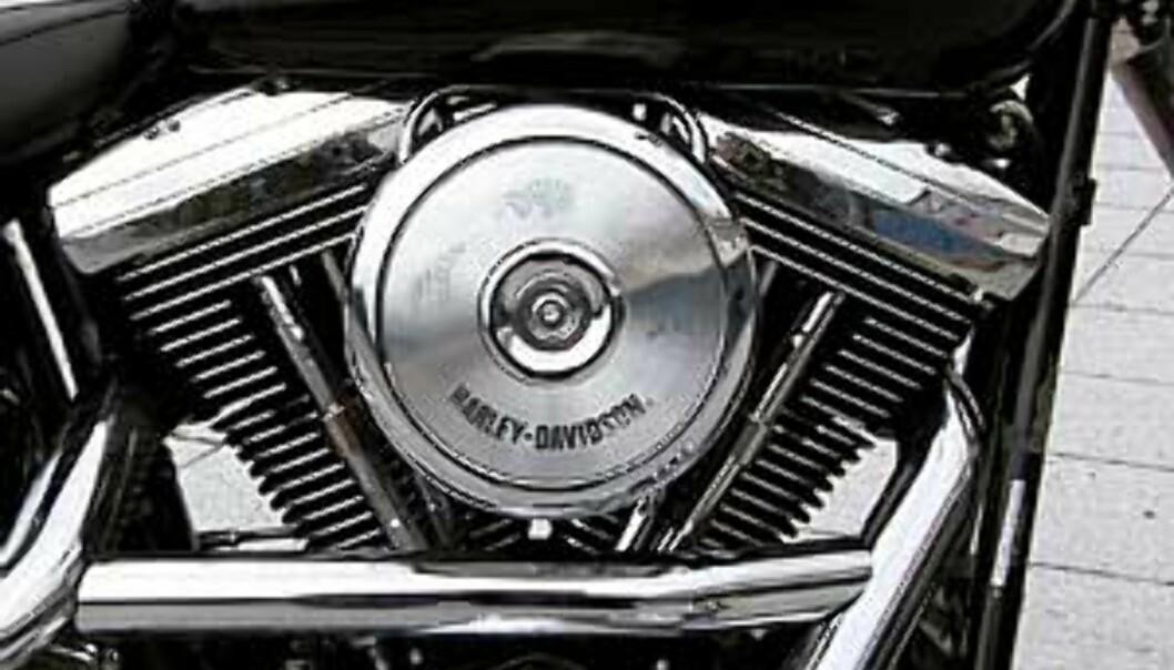 Stort bilde motor