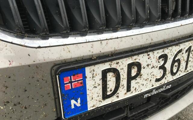 073e19f7 MYGGFANGER: Støtfangeren er også en effektiv myggfanger. Slik så den ut på vår  bil