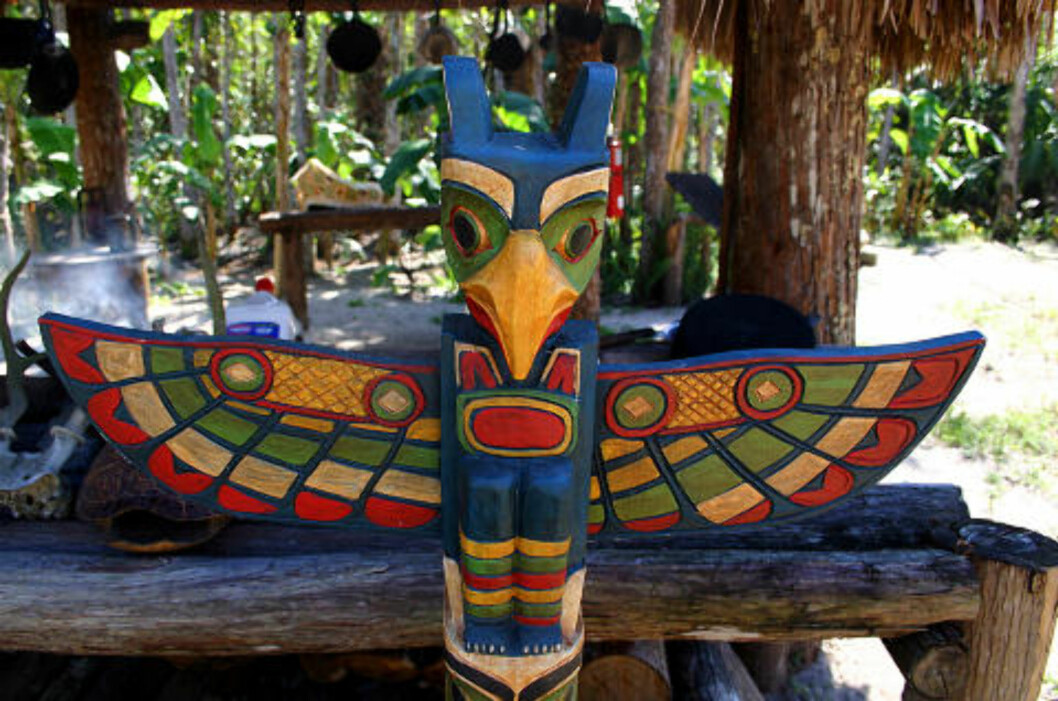 <strong> INDIANERLAND:</strong>  Besøk Miccosukee-indianernes reservat i Everglades. Foto: KIRSTEN M. BUZZI