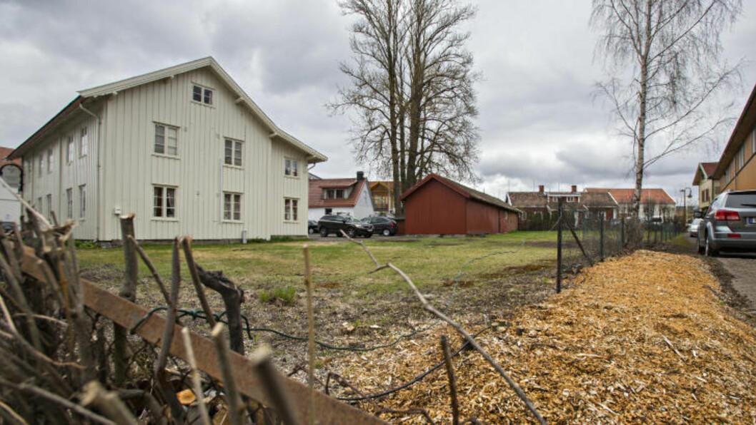 <strong>STORGATA 3:</strong> Det var i Jessheim sentrums eldste hage at nedfellingen av trærna fant sted i vinter. Dæhlie har tidligere beklaget å ha hogget ned de vernede trærne. Foto: Torbjørn Berg / Dagbladet