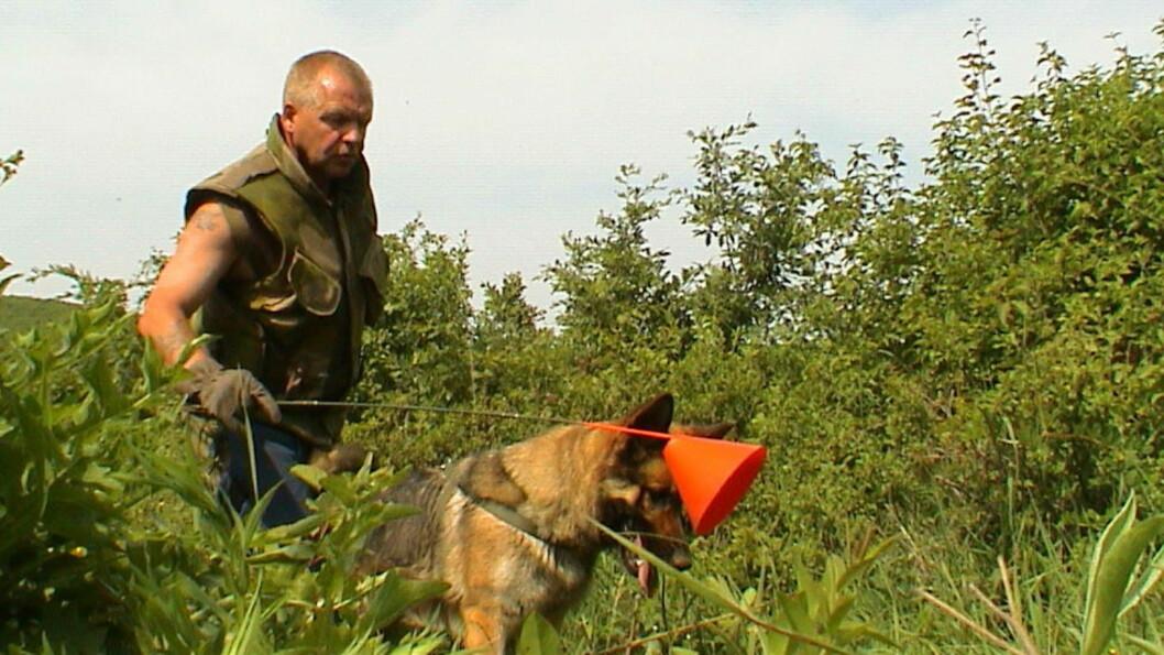 <strong>PÅ SØK:</strong> Asbjørn Grande og «Betty» på minesøk i Kosovo i 2001. Ekvipasjen bidro også sterkt med å søke etter massegraver, noe offentligheten aldri ble informert om. Foto: PRIVAT