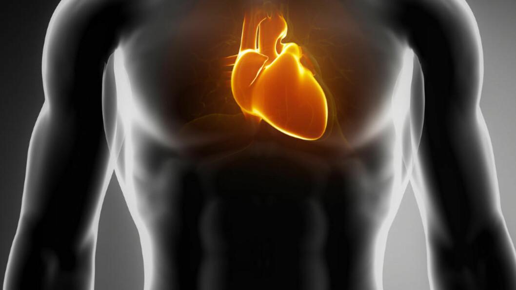 <strong>KAN PÅVISE RISIKO:</strong> Tidligere har målinger av troponin blitt brukt til å slå fast om en pasient har hjerteinfarkt eller ikke. Men nå er nye og mer sensitive metoder på vei inn i norske sykehus, som gjør det mulig å måle hvor farlig hjertesykdommen er for den enkelte pasient. Foto: FOTOLIA / NTB SCANPIX