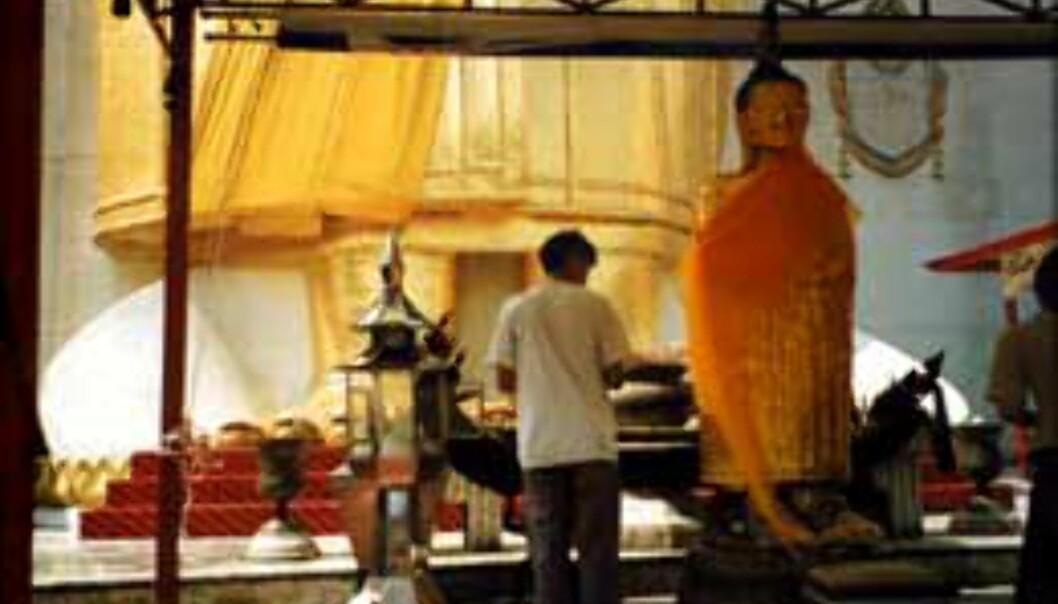 En stor del av hverdagen går med til å be og vise respekt for Buddha.