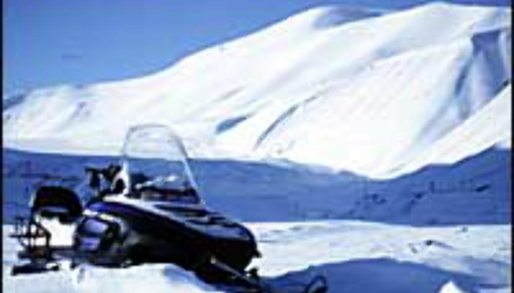 Safari på norsk kan være skutersafari på Svalbard.<br /> <I>Foto: Kristin Sørdal</I>
