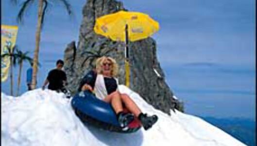 """<strong>Sommermoro ved Titlis, som er et av de øvrige europeiske skianleggene med sommerski du kan lese mer om i <a target=""""_top"""" href=""""http:</strong>//intra.katalysatormedia.no/php_adm/preview/preview_art.php?id=90414"""">Sommerski i Europa</a>.<br /> <I>Foto: Engelberg-Titlis</I> Foto: engelberg-titlis pressebilde"""