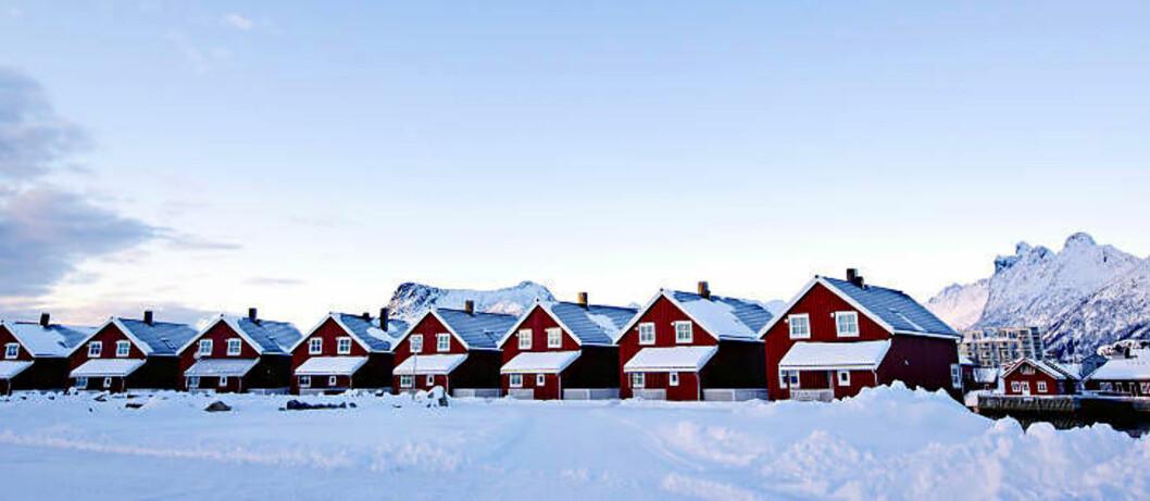 <strong>RORBUSUITENE:</strong> Beliggenheten, rødfargen og byggestilen gjør at de minner om sine eldre slektninger, men dette er rorbuer à la 2000-tallet. Foto: ANITA ARNTZEN