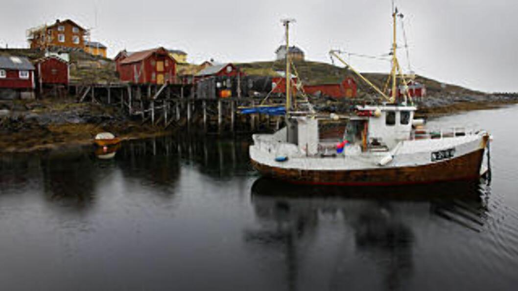 <strong>JULI:</strong> Utenfor selve Vega finnes en egen øyverden. Her er de tidligere egg og dunværene og det restaurerte fiskeværet Skjærvær. Foto: OLE C. H. THOMASSEN