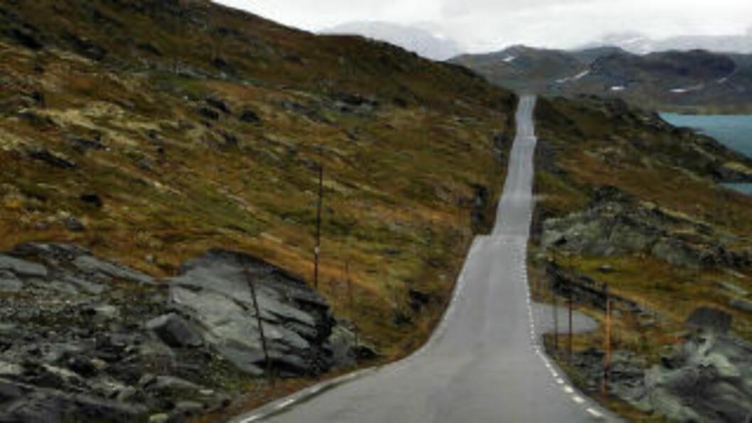 <strong>SEPTEMBER:</strong> Sognefjellsveien er vår første nasjonale turistvei og Nord-Europas høyeste fjellovergang med 1434 meter over havet.  Foto: OLE C. H. THOMASSEN
