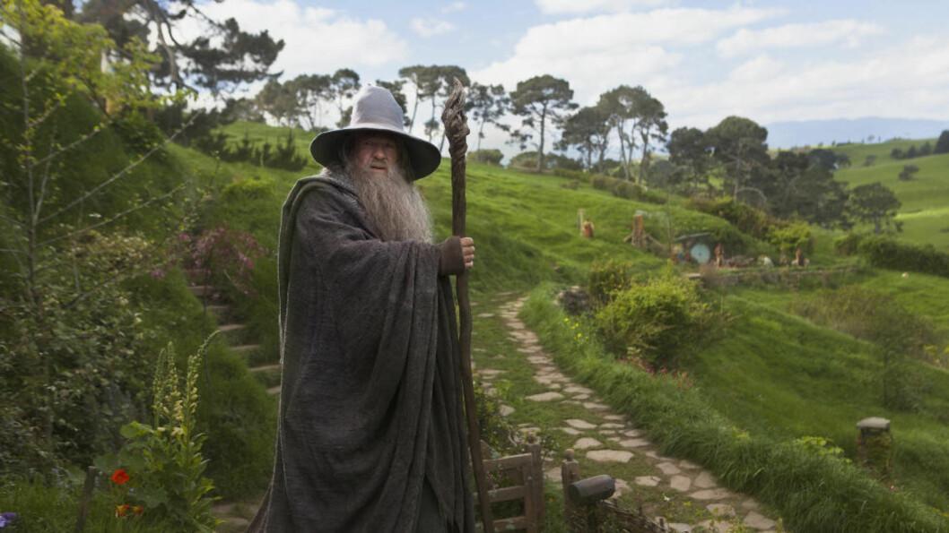 <strong>PREMIEREKLAR:</strong> «Hobbiten: En uventet reise» har premiere i midten av desember, men dersom dyrevernsorganisasjonen Peta holder ord, vil den ikke gå lydløst for seg. Organisasjonen reagerer nemlig på at 27 dyr har dødd i forbindelse med innspillingen, og varsler protester. Foto: James Fisher / Metro-Goldwyn-Mayer Pictures / New Line Productions.