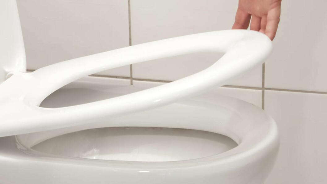 GANSKE RENT: Det er langt flere bakterier på kjøkkenkluten og skjærefjøla enn det er på doringen. Foto: Colourbox.