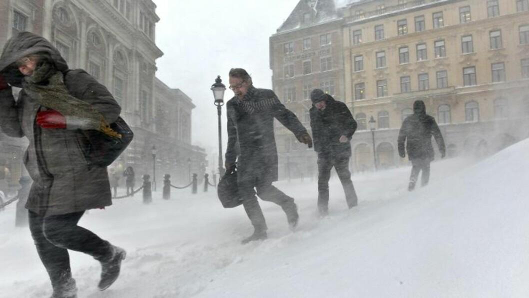 <strong>SNØ OG VIND:</strong> Det er snøfall og kraftig vind i Stockholm i dag. Foto: ANDERS WIKLUND / NTB scanpix