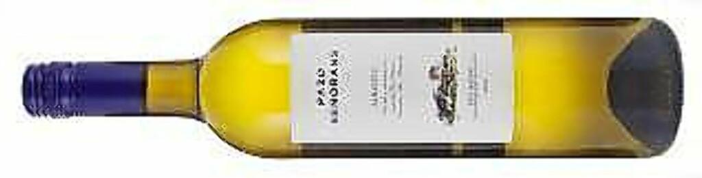 TIL UNGE DAMER SOM DRIKKER HVITVIN I LYSTIG LAG: Pazo de Senorans Albarino, Rias Baixas Spania 2011.