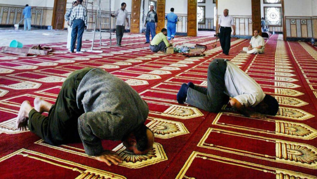 <strong>TRENGER REFORM:</strong> «Det er etter hvert et sterkt behov for en slags reformasjon av islam. Man må frigjøre seg fra dogmene.» skriver Assad Nasir som for tiden har en serie artikler i Dagbladet. Foto: Petr Josek / Reuters / NTB scanpix