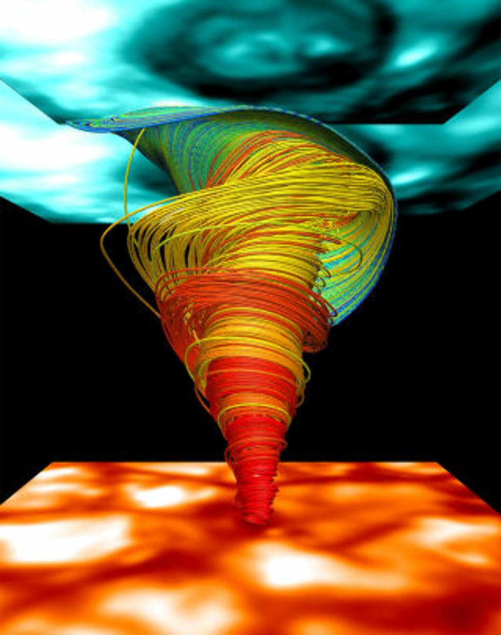 IKKE FARLIG FOR JORDA: Bildet av solas overflate vises i oransje under soltornadoen og tornadoens virvelsignatur vises i blått over. Soltornadoene er ikke farlig for oss her hjemme. Illustrasjon: Wedemeyer-Böhm et al. (2012). Laget vha VAPOR.
