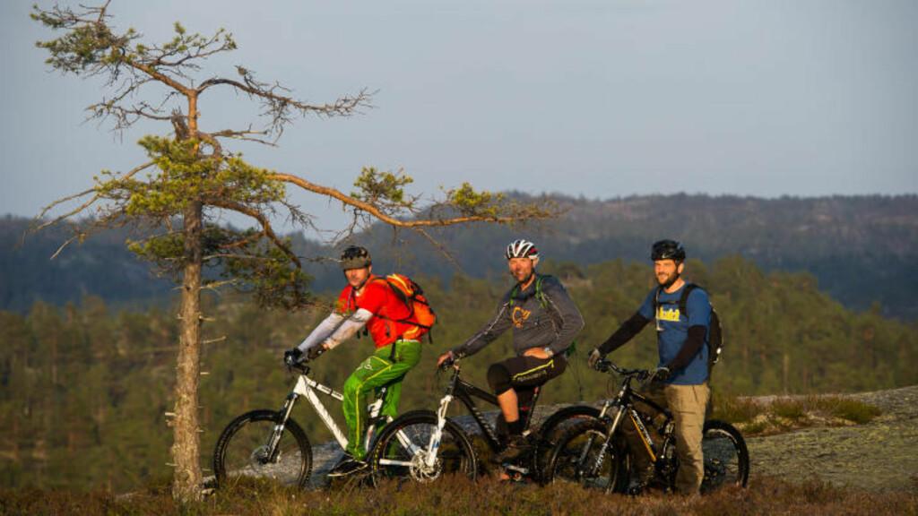 SLAKE SVABERG: De mange slakke svabergene og rikelige forekomstene av drikkevann i terrenget i Nissedal, gjør at det egner seg godt til utfarter på to hjul, mener sykkelentusiastene. Foto: ROGER BRENDHAGEN