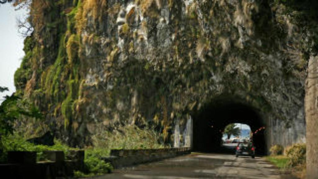 NATUR:  En kjøretur på avsidesliggende veier kan være en stor opplevelse. Da kommer du virkelig tett på Madeiras frodige og ville natur.