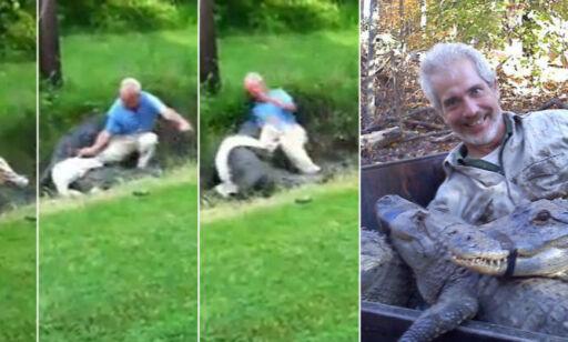image: Her går det galt for alligatoreksperten