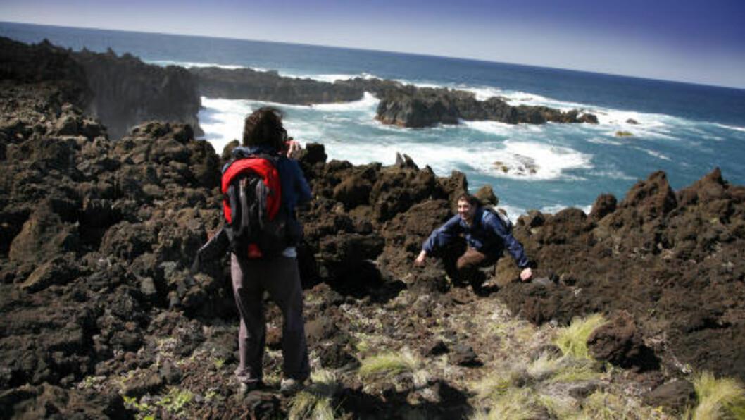 VAKKERT: Landskapet rundt Ponta da Ferraria er både vilt og vakkert, med skarpe lavaformasjoner og frådende Atlanterhav. Ikke et sted å gå barføtt! Foto: EIVIND PEDERSEN