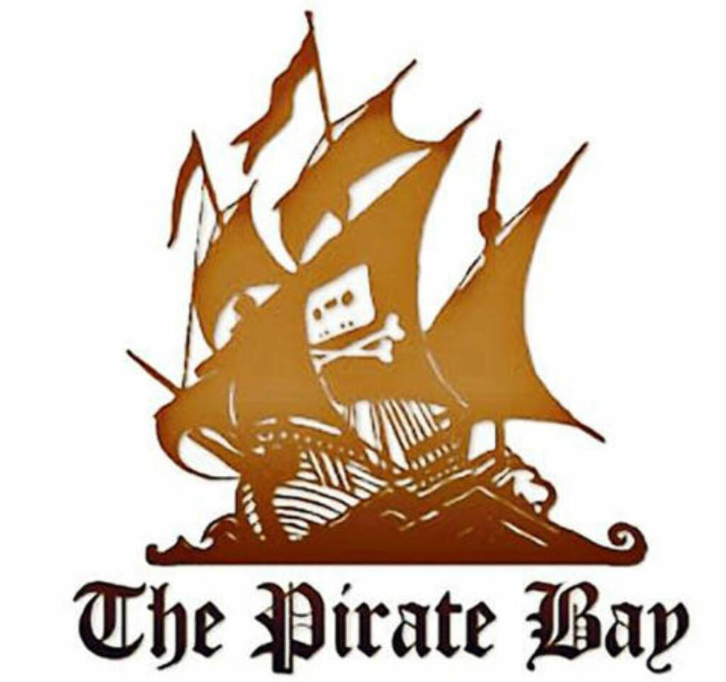 SYNKER IKKE: Selv om fire av bakmennene til The Pirate Bay er dømt, holder piratnettsiden stand med nye bakmenn.