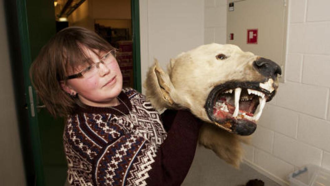 <strong>GAPENDE KJEFT:</strong> Sunniva Aagaard hos Direktoratet for naturforvaltning viser fram et smuglet isbjørnhode. Foto: Geir Barstein / Dagbladet