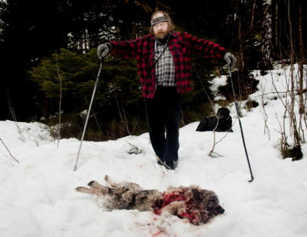 DREPT AV ULV: I mars ble elghunden Wendy drept av det Statens naturoppsyn mener er ulv, bare 700 meter fra bebyggelse. Hundeeier Oddbjørn Rosendal (63) er her tilbake på stedet i skogen der han fant den døde hunden. Foto: Espen Røst / Dagbladet