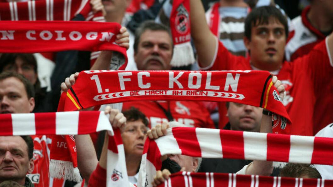 <strong>FANSEN POSITIV:</strong> Köln-fansen har fortsatt tillit til Ståle Solbakken, selv om flere spillere er uttrykt misnøye. Foto:  AFP PHOTO  / PATRIK STOLLARZ