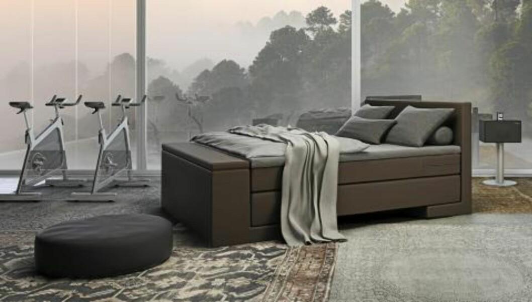 <strong>SENG I SÆRKLASSE:</strong> Wonderland-sengen Harmony har rene, elegante linjer. Trukket i et møbelstoff blir sengen mer enn et soveredskap - den blir et møbel. Fra kr 23.990.  FOTO: Produsenten