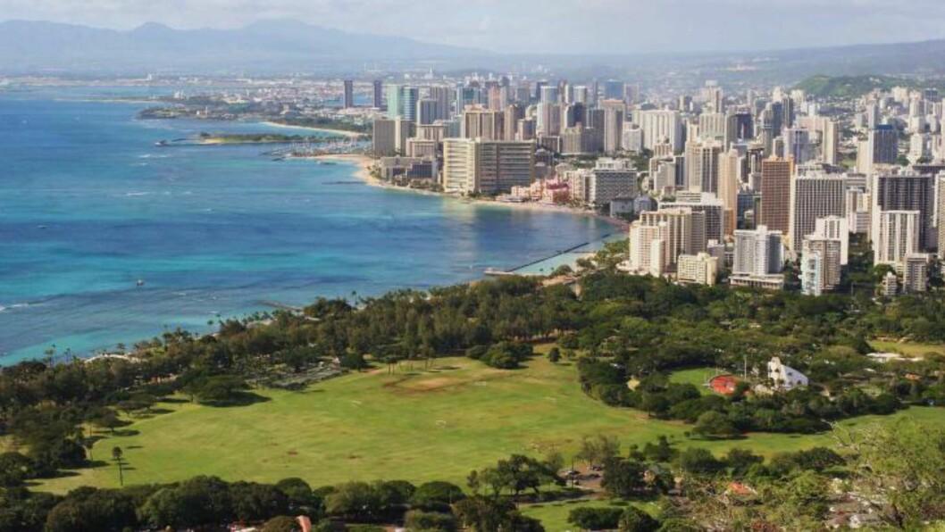 <strong>UTSIKT:</strong> Hovedstaden Honolulu sett fra Diamond Head. Foto: TOM HELGESEN