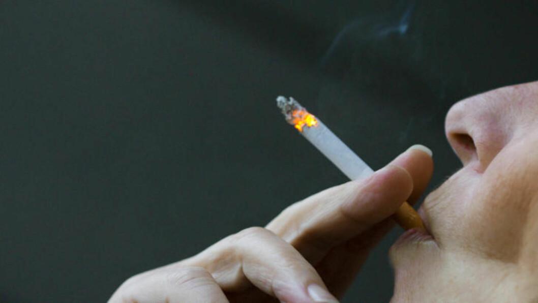 <strong>VIL SLUTTE:</strong> 50 prosent av norske røykere ønsker å slutte. 18-19 prosent av disse ønsker å slutte akkurat nå. Foto: Berit Roald / Scanpix