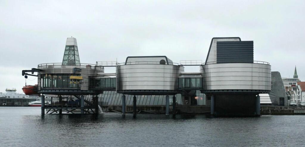 NORSK OLJEMUSEUM: Som en oljeplattform ligger Stavangers signaturbygning ute på Kjeringholmen. Foto: TOMMY ELLINGSEN