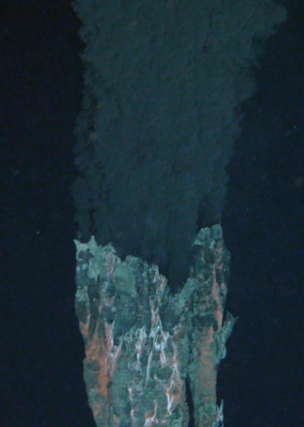 <strong>MATEN ER SERVERT:</strong> En av ventilene forskerne fant i Beebe Vent Field i Det karibiske hav. Bakterier livnærer seg av giftige forbindelser som strømmer ut med det varme vannet fra jordas indre, og danner grunnlaget for hele økosystem av høyerestående organismer. Foto: Oxford University