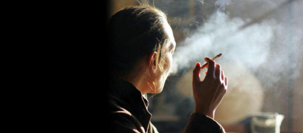 <strong>FANATISME:</strong> «Mange bærer på en våt drøm om totalforbud. De ønsker tobakk inn på narkotikalisten, og saken deres står dessverre stadig sterkere,», skriver kronikkforfatteren. Illustrasjonsfoto: Dominique Faget/AFP/Scanpix