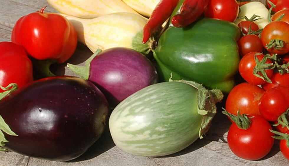 SMÅ FRISTELSER: Mini-aubergin er en av mange titalls minigrønnsaker du kan dyrke selv, eller finne i butikken om du er heldig. Mye tyder på at du oftere vil se minigrønnsaker i butikken framover. Foto:NTB SCANPIX