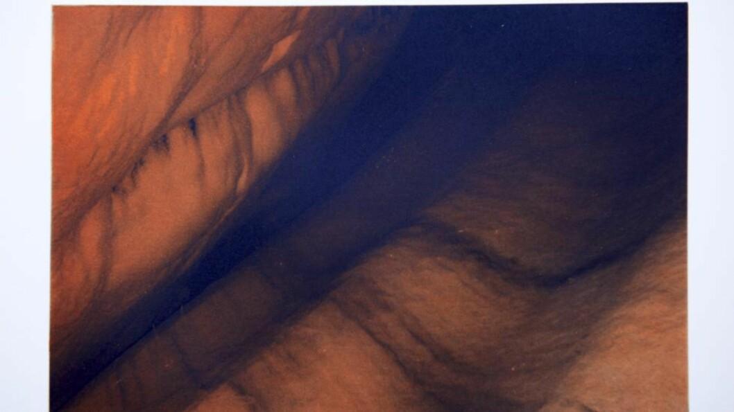 <strong>SKAL STILLES UT:</strong> - Bildet må sies å inneha en viss kjødelig kvalitet som får meg til å tenke på arbeidene til for eksempel den tyske kunstneren Wolfgang Tillmans, sier kunstkritiker Erlend Hammer. Kunstverk: Dronning Sonja/Foto: Stefan Lindblom/Stella Pictures