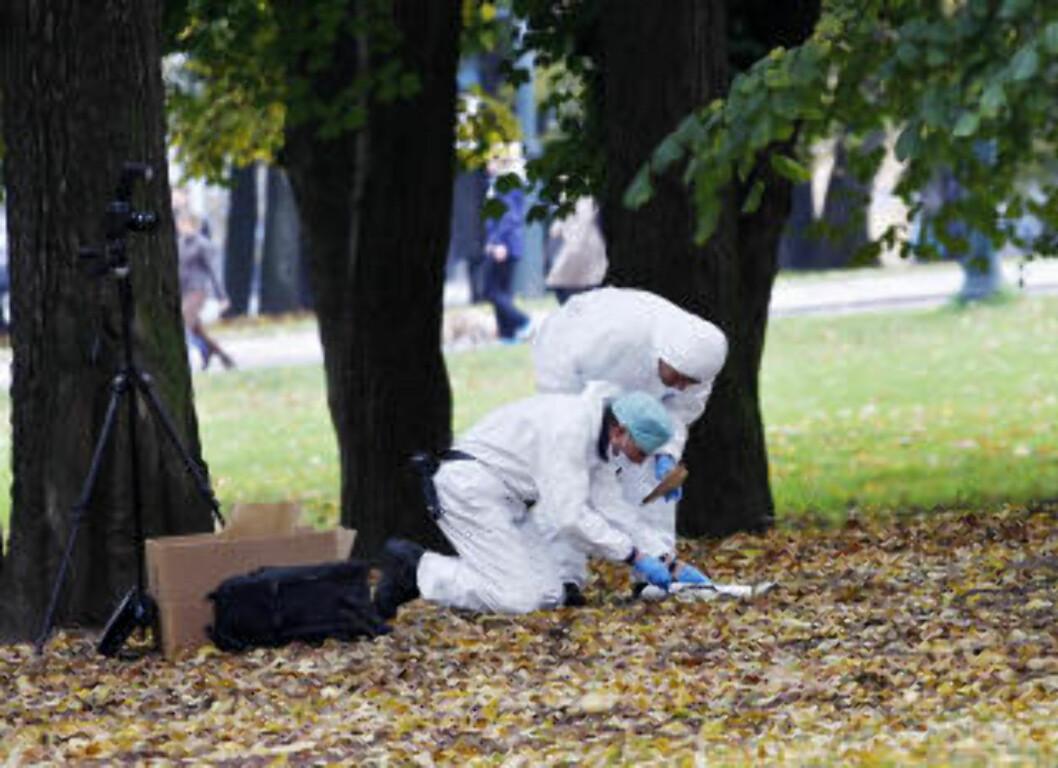 <strong>FIRE VOLDTEKTER I SLOTTSPARKEN I ÅR:</strong>  Kriminalteknikere sikrer spor etter en voldtekt i Slottsparken natt til søndag 23. oktober. Foto: Erlend Aas / Scanpix